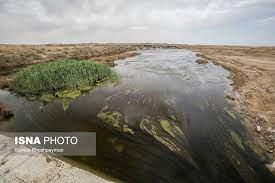 سایه سنگین بر سر محیط زیست
